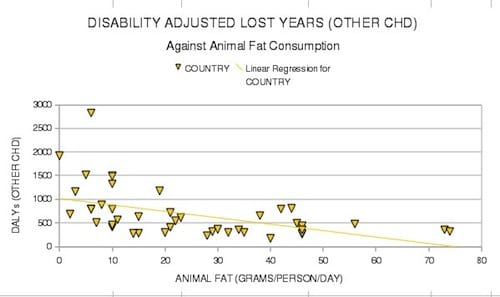 Other CHD vs Animal Fat