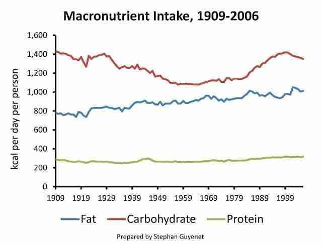 Adjusted macro intake 1909-2006