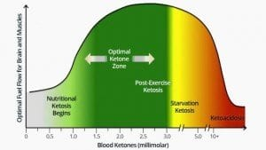 What Do You Mean When You Say Ketosis?