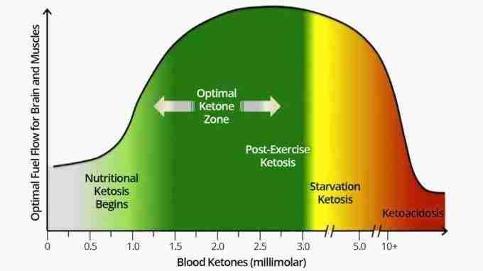 Ketonezone-f9-1-800x395