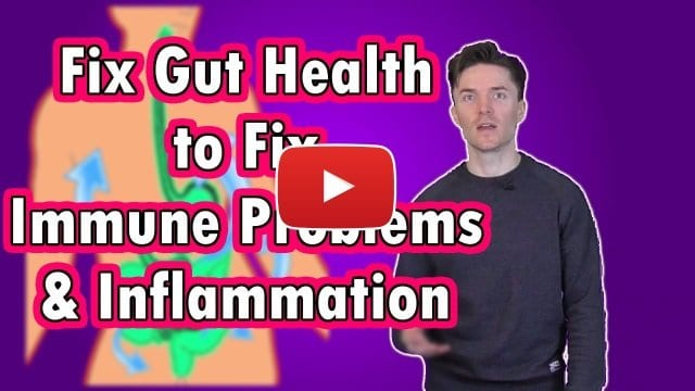Fix The Gut To Fix Immune Problems And Inflammation